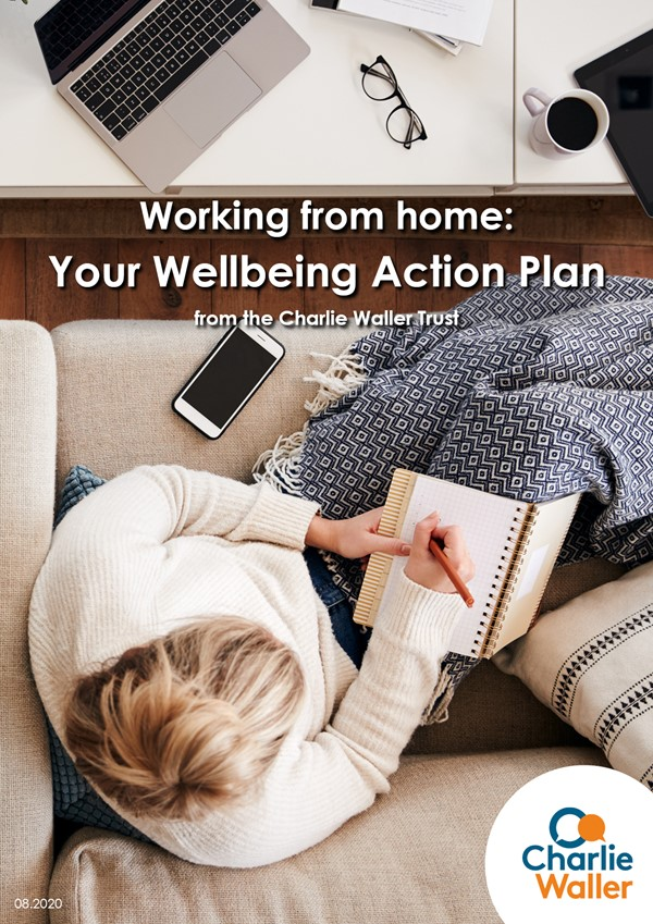 Working From Home Wellbeing Action Plan front cover